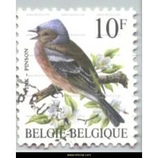 1990  Birds Fringilla coelebs
