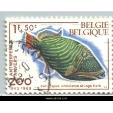 1968 Zoo Antwerp IV Fish 1+50 Fr